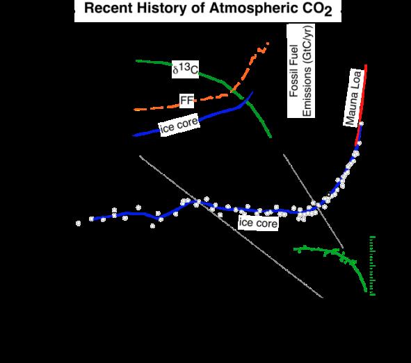 C13 isotop lång tid